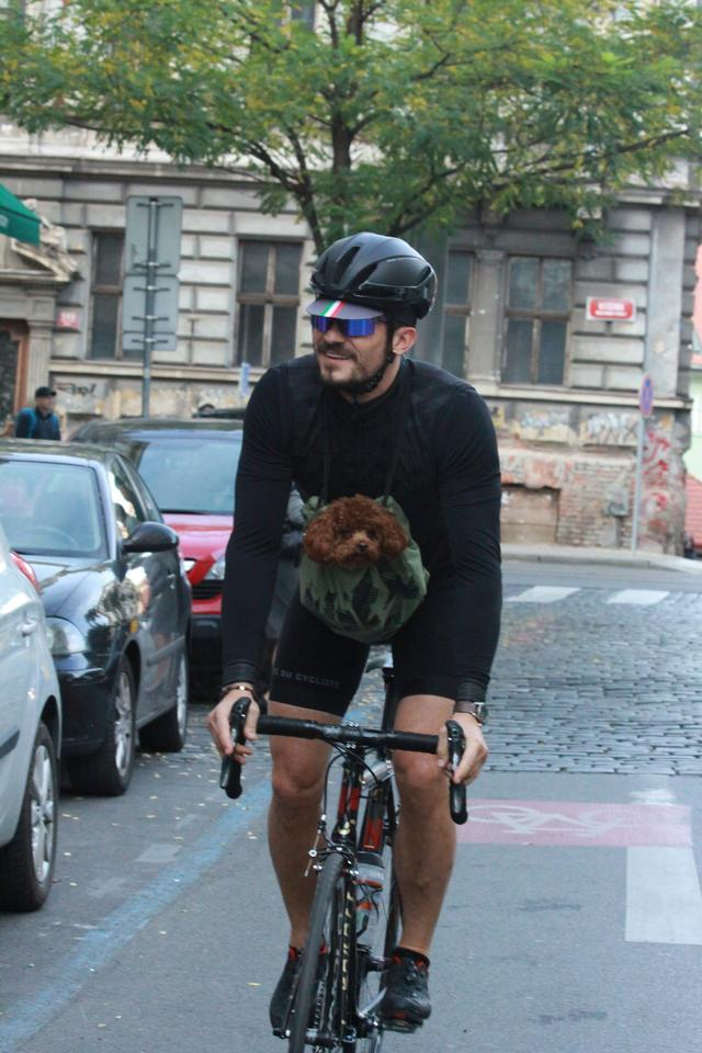 画像4: オーランド・ブルーム、愛犬と一緒に自転車に乗る姿がカンガルーのよう