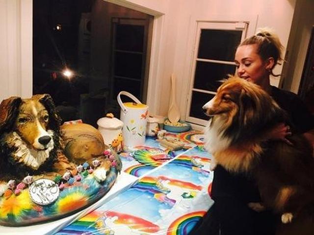 画像: 愛犬形のバースデーケーキに感動。