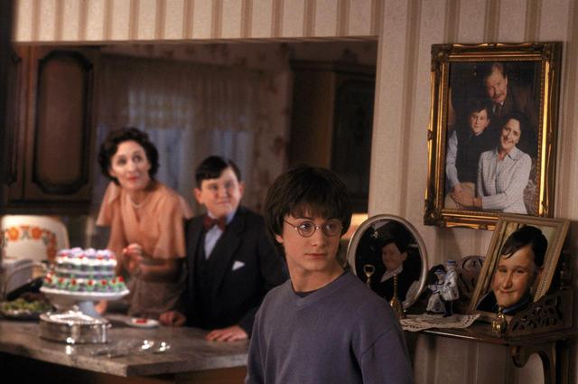 画像1: ハリーの従兄に当たるダドリー役の現在