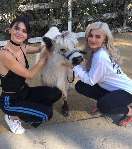 画像: 動物好きなカイリー(右)と、姉のケンダル・ジェンナー(左)。