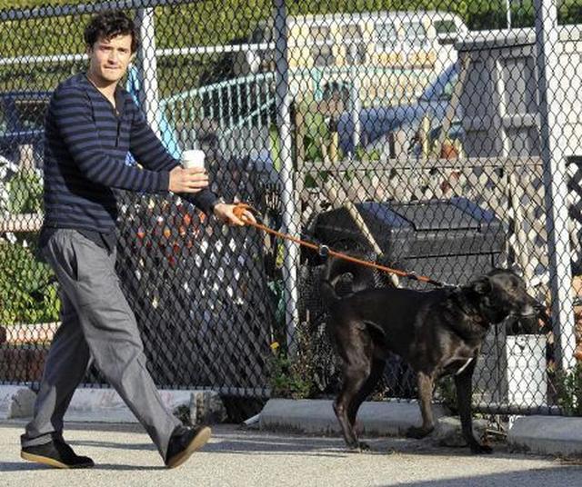 画像: シディと名付けられた愛犬はいつもオーランドと一緒だった。