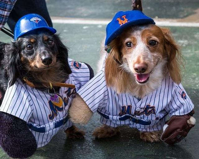 画像: NYっ子の大好きなことと言えば、メジャーリーグ観戦。この子たちはメッツのファン。