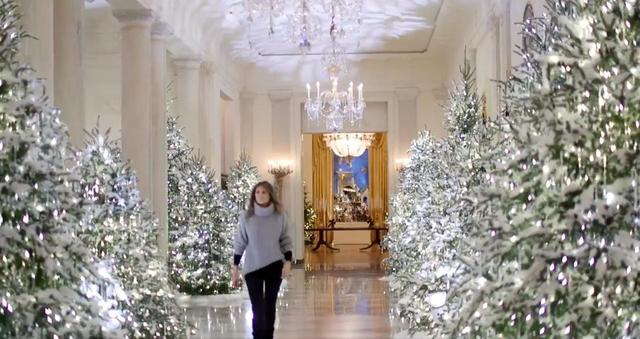 画像1: ツリーだらけのホワイトハウス