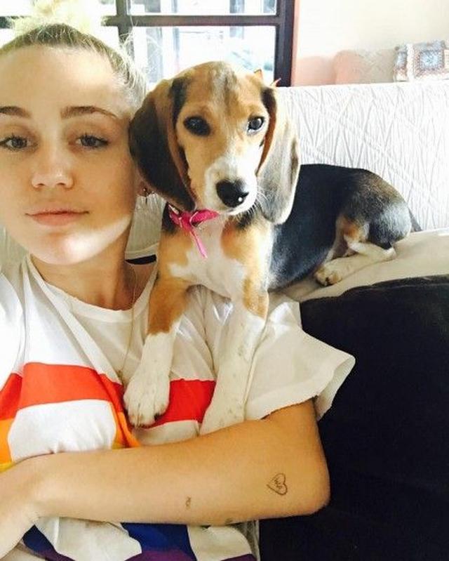 画像: マイリーと、新しく飼い始めたビーグル犬のバービー。