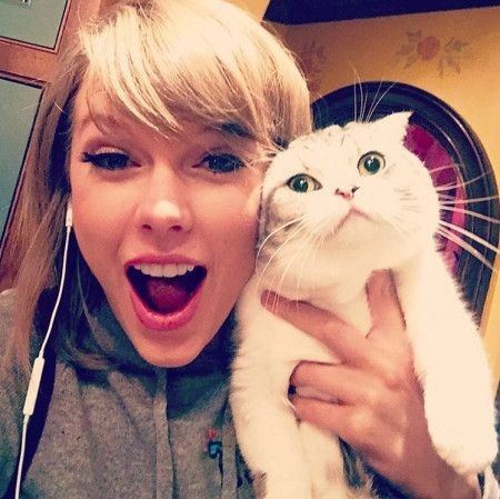 画像: メレディスは2011年から飼っている猫。名前の由来はテイラーが好きなドラマ『グレイズ・アナトミー』の主人公からとったもの。