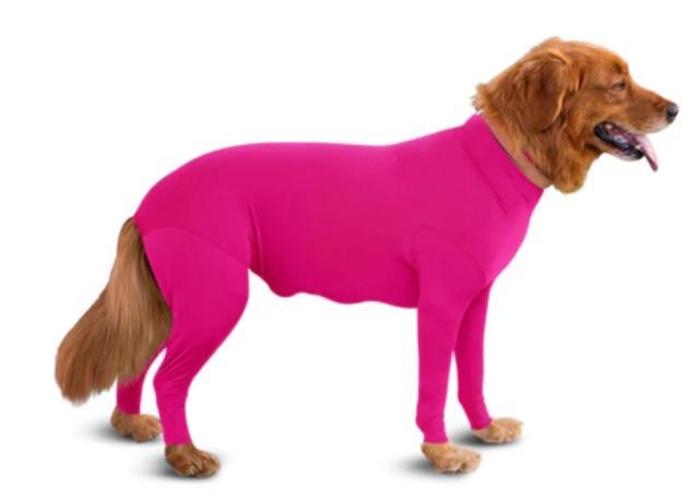 画像: カラーバリエーションは8種類。超小型犬用のミニサイズから大型犬のXXLまでのサイズ展開。ちなみに、下腹部にはジッパーがついており、トイレの際には開閉が可能となっている。©Shed Defender