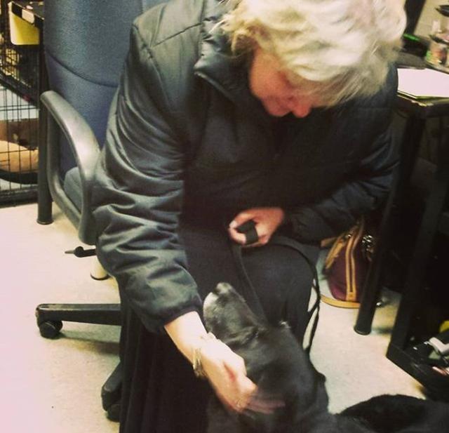 画像: デボラと再会するアビー。©instagram/animalprotectorsshelter