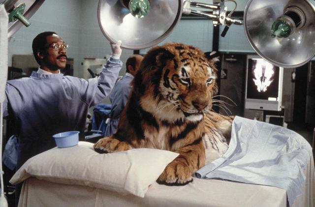 画像: セレーナ・ゴメス、新『ドクター・ドリトル』に出演決定!共演には豪華キャストが