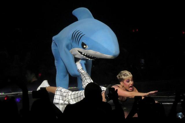 画像2: 「左のサメ」が登場