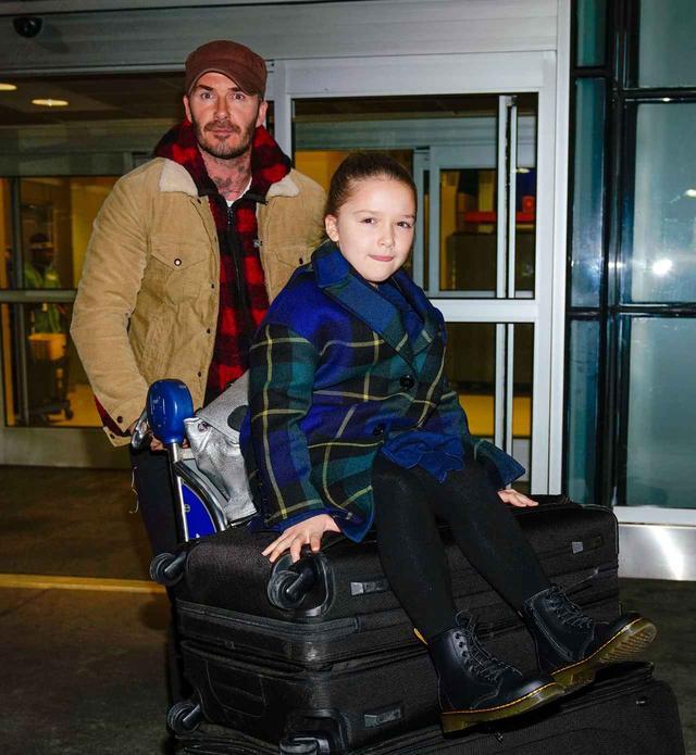 画像: 大きなスーツケースとハーパーちゃんを押しながらJFK空港に到着したデヴィッド。