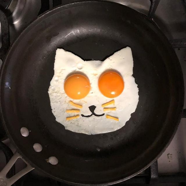 画像1: The Eggs-hibitさんはInstagramを利用しています:「Check meowt」 www.instagram.com