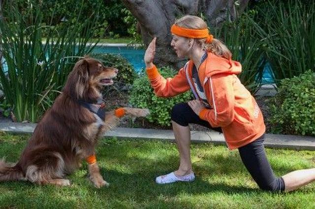 画像2: 『レミゼ』女優のアマンダ・サイフリッドが「犬猫 殺処分ゼロ」運動に参加