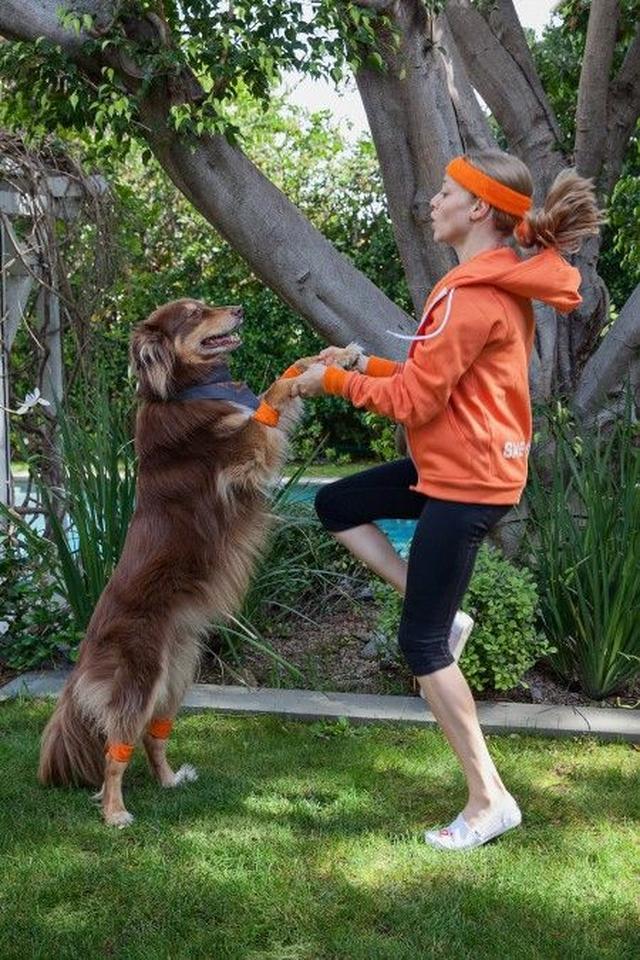 画像4: 『レミゼ』女優のアマンダ・サイフリッドが「犬猫 殺処分ゼロ」運動に参加