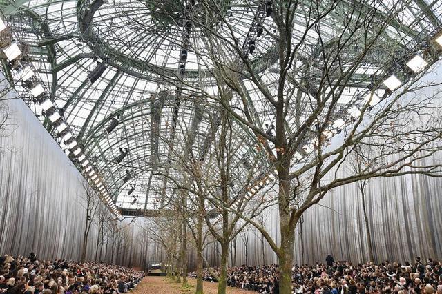 画像2: 会場内に冬の森を再現したアートなランウェイ