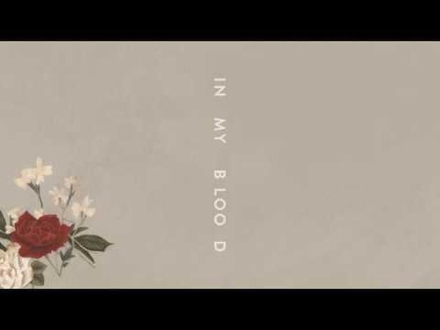 """画像: Shawn Mendes """"In My Blood"""" (Audio) www.youtube.com"""