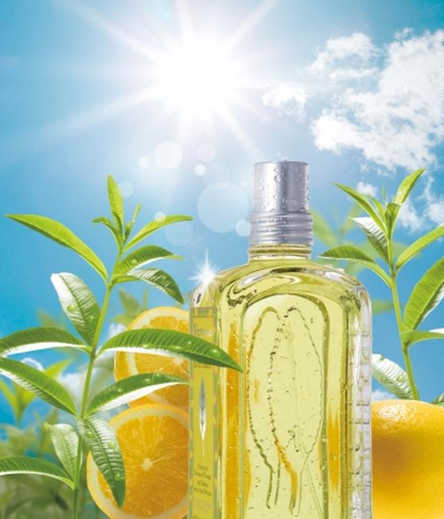 画像1: ロクシタンより限定の新シリーズは、レモンやグレープフルーツのジューシィな香り「シトラスヴァーベナ」