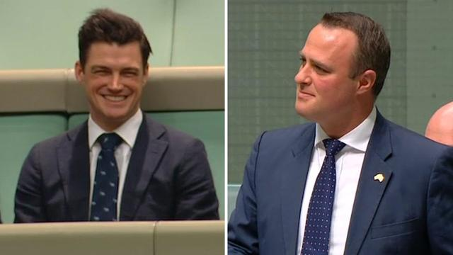 画像: Australian MP proposes to partner during same-sex marriage debate in parliament www.youtube.com