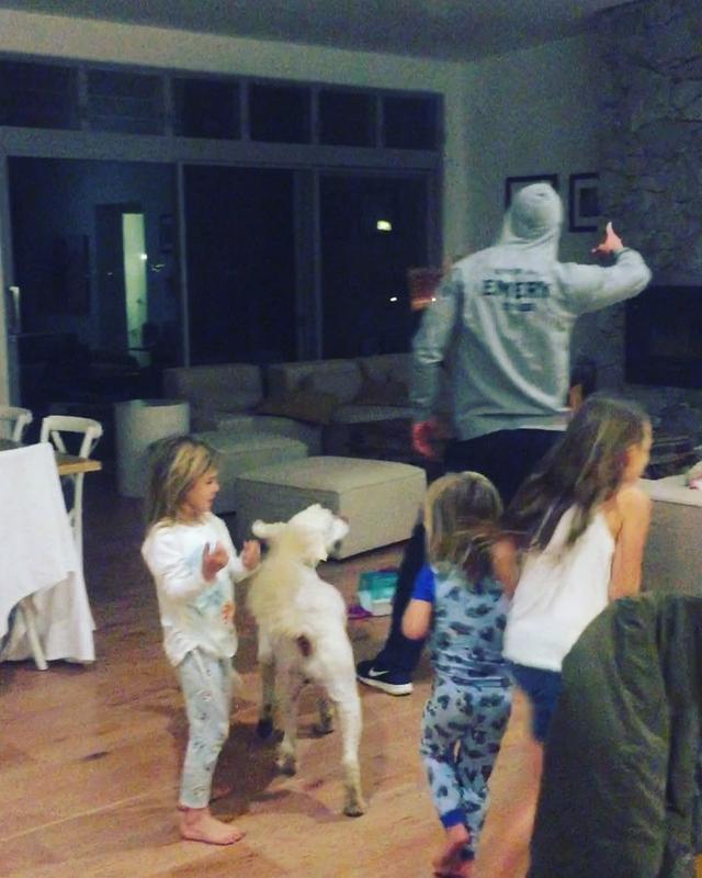 画像1: Chris HemsworthさんはInstagramを利用しています:「What started as a ground breaking music video ended in a savage attack by a cowardly K9. Never work with Kids or Animals. #wreckingball…」 www.instagram.com