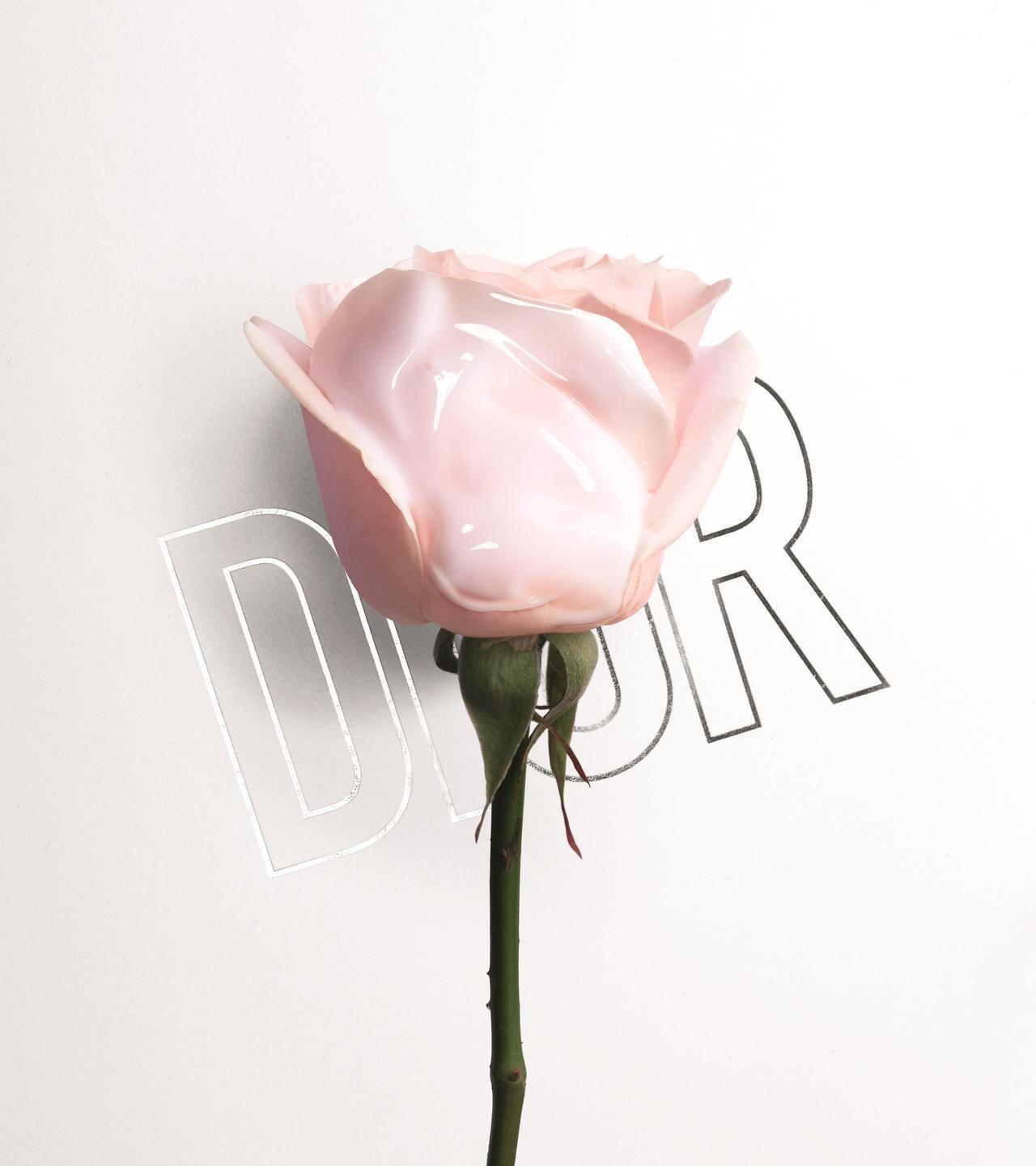 画像3: ミス ディオール、ローズが香る二層式のボディオイルが誕生♡