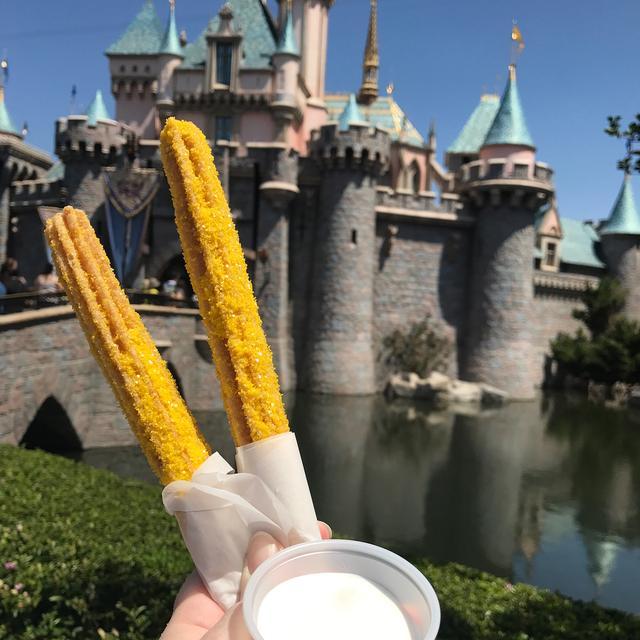 画像1: Heather SieversさんはInstagramを利用しています:「Pineapple Churro with Marshmallow Dipping Sauce from the churro cart in front of Sleeping Beauty's Castle. Not my favorite, but I for sure…」 www.instagram.com