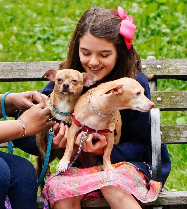 画像2: トム・クルーズの愛娘スリちゃん、犬と遊ぶ姿が愛らしい