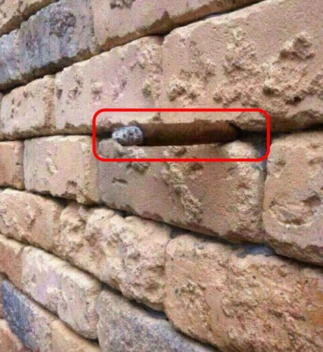 画像: 一見ただの壁の写真…隠された「ある事実」にあなたは気づきますか?