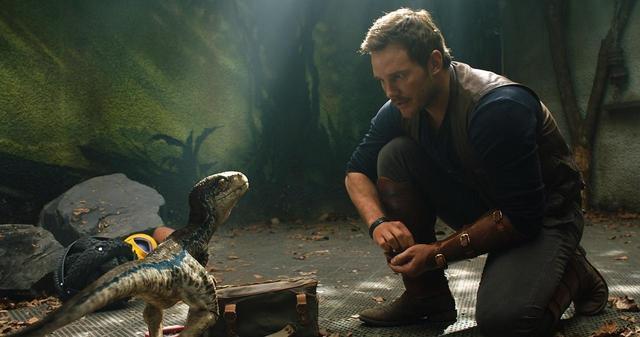 画像1: 恐竜ブルーがモチーフのオリジナルスタンプ