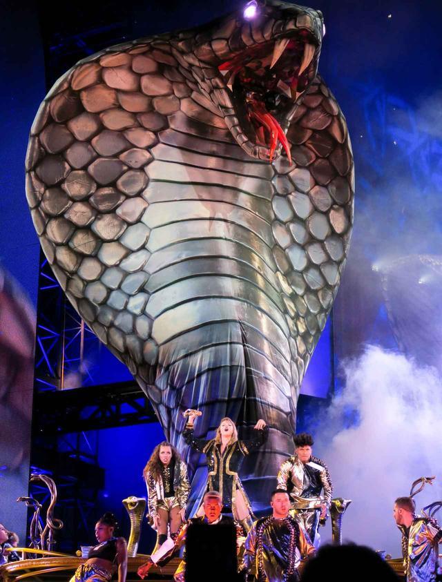 画像3: 5. 6メートルの巨大ヘビが登場