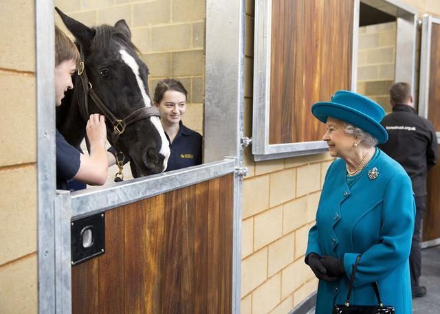 画像: サレー大学獣医学部の馬舎を訪問したエリザベス女王。馬を見つめる眼差しはとても優し気。
