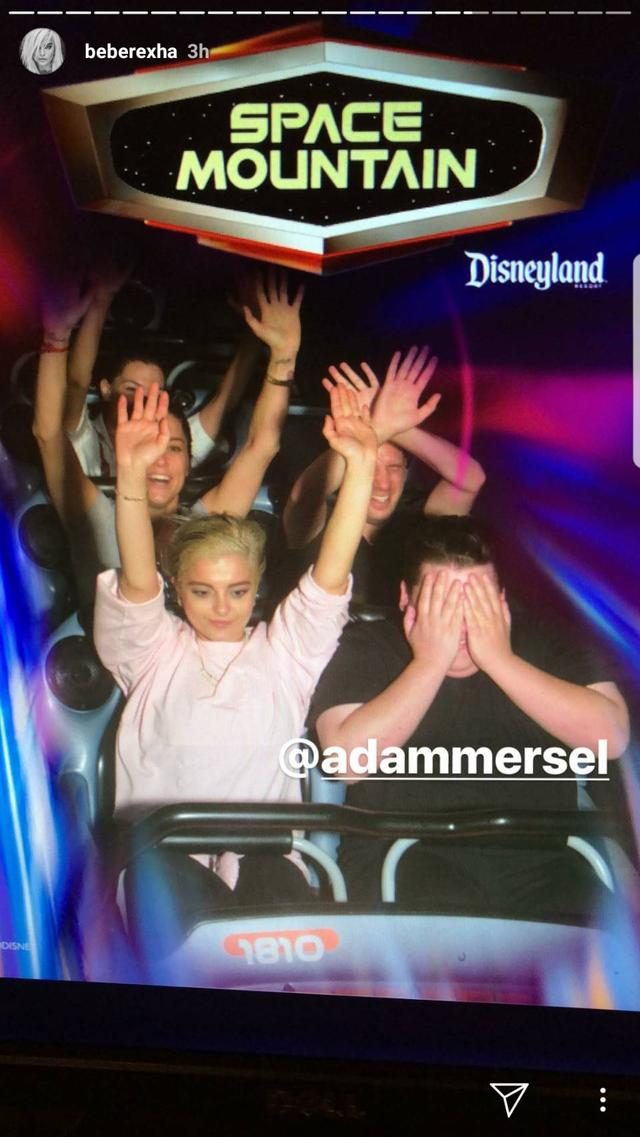 画像4: ディズニーランドなどの絶叫マシーンに乗るとセレブはどうなる?写真を一挙公開
