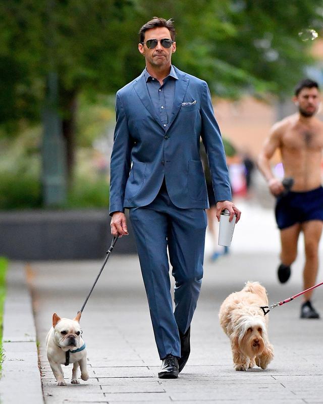 画像1: ヒュー・ジャックマン、スーツ姿で愛犬散歩する様子が絵になりすぎる