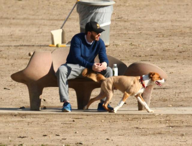 画像2: クリスの「愛犬家あるある」ツイートに共感の声殺到