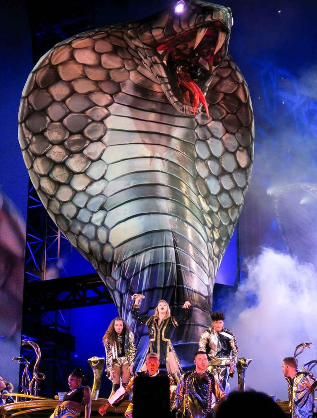 画像: 『レピュテーション・スタジアム・ツアー』のステージに登場したキャリン。