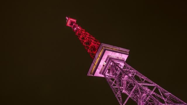 画像: 11日の国際ガールズ・デーを記念して、毎年、世界各地でモチーフカラーのピンク色のライトアップが実施される。写真はドイツのベルリンテレビ塔。