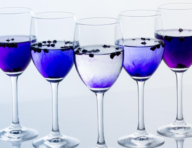画像6: 青いお茶「モンゴリアンベリーティー」で、飲むエイジングケア!