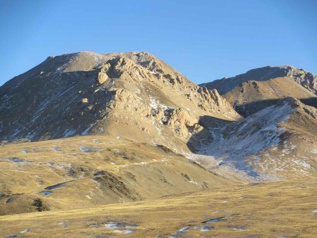 画像: モンゴリアンベリーが摂れる、アルタイ山脈