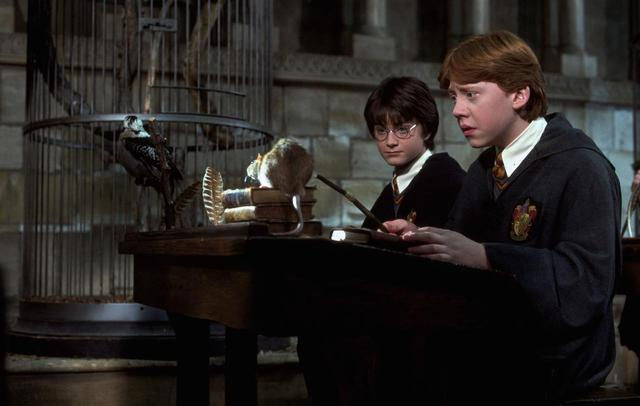 画像4: ジェイコブは『ハリー・ポッター』の誰と似ている?