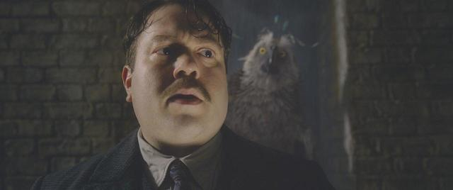画像2: ジェイコブは『ハリー・ポッター』の誰と似ている?