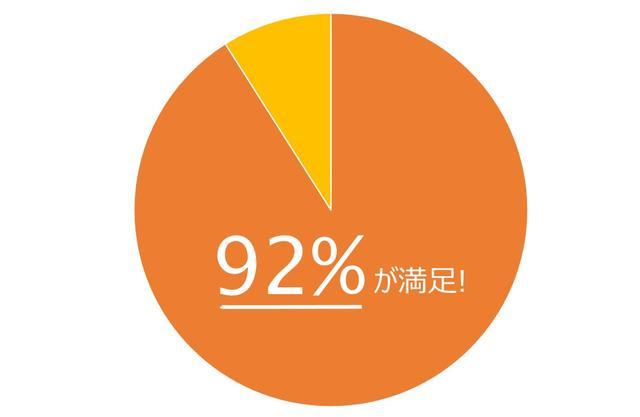 画像: 使用者528名対象 2013年1月ザ・プロアクティブカンパニー株式会社調べ