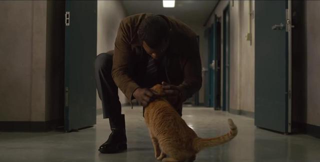 画像2: 『キャプテン・マーベル』に登場する「猫」の存在