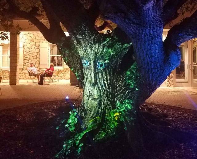 画像1: 「木」からの質問に声を出して笑う