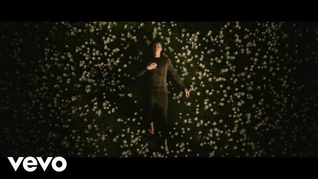 画像: Shawn Mendes - In My Blood www.youtube.com