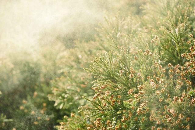 画像2: 花粉時期のコスメ対策!アイライナーをにじませない方法