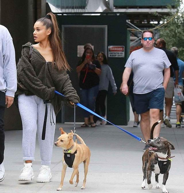 画像: 愛犬を散歩させるアリアナ。左がトゥールーズで、右がマイロン。