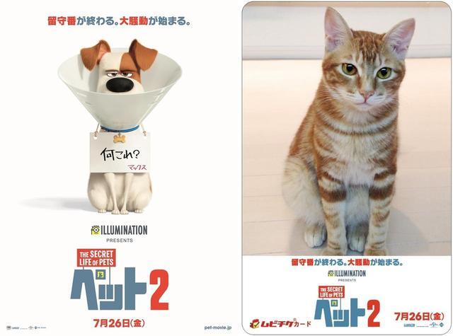 画像2: 『ペット2』動物好きにはたまらない特別前売り券と、ストラップつき前売り券の発売が決定