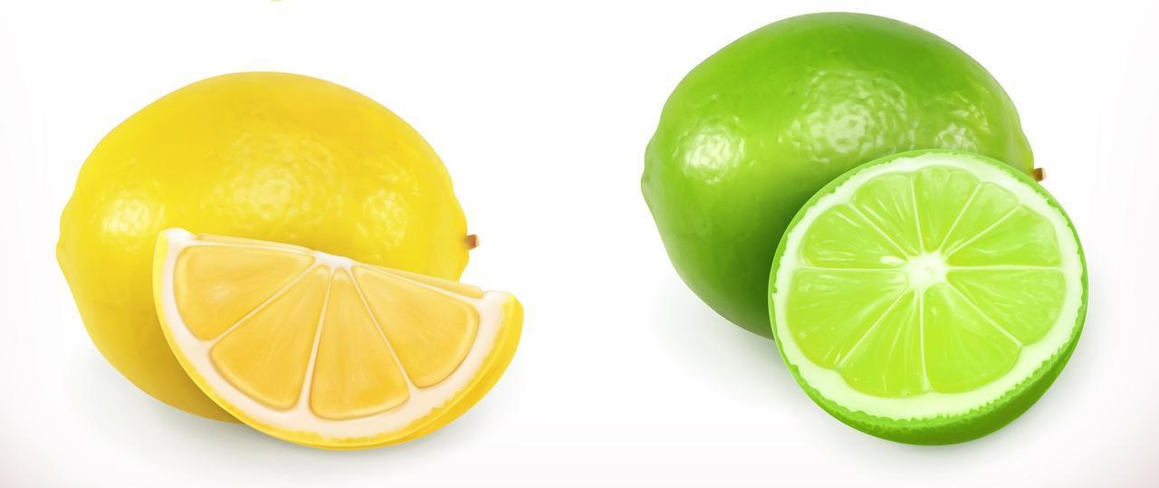 画像1: 1.柑橘類が大好き!