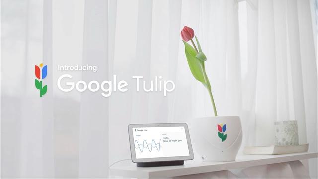 画像: Introducing Google Tulip www.youtube.com