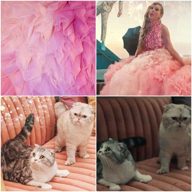 画像2: ©Taylor Swift / instagram, YouTube