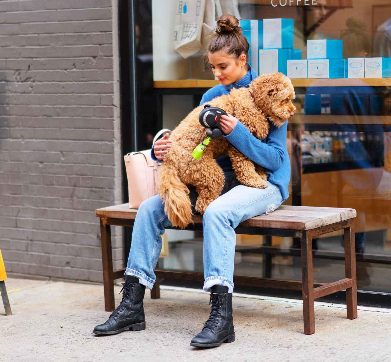 画像6: 溺愛する愛犬とブルーボトルコーヒーへ