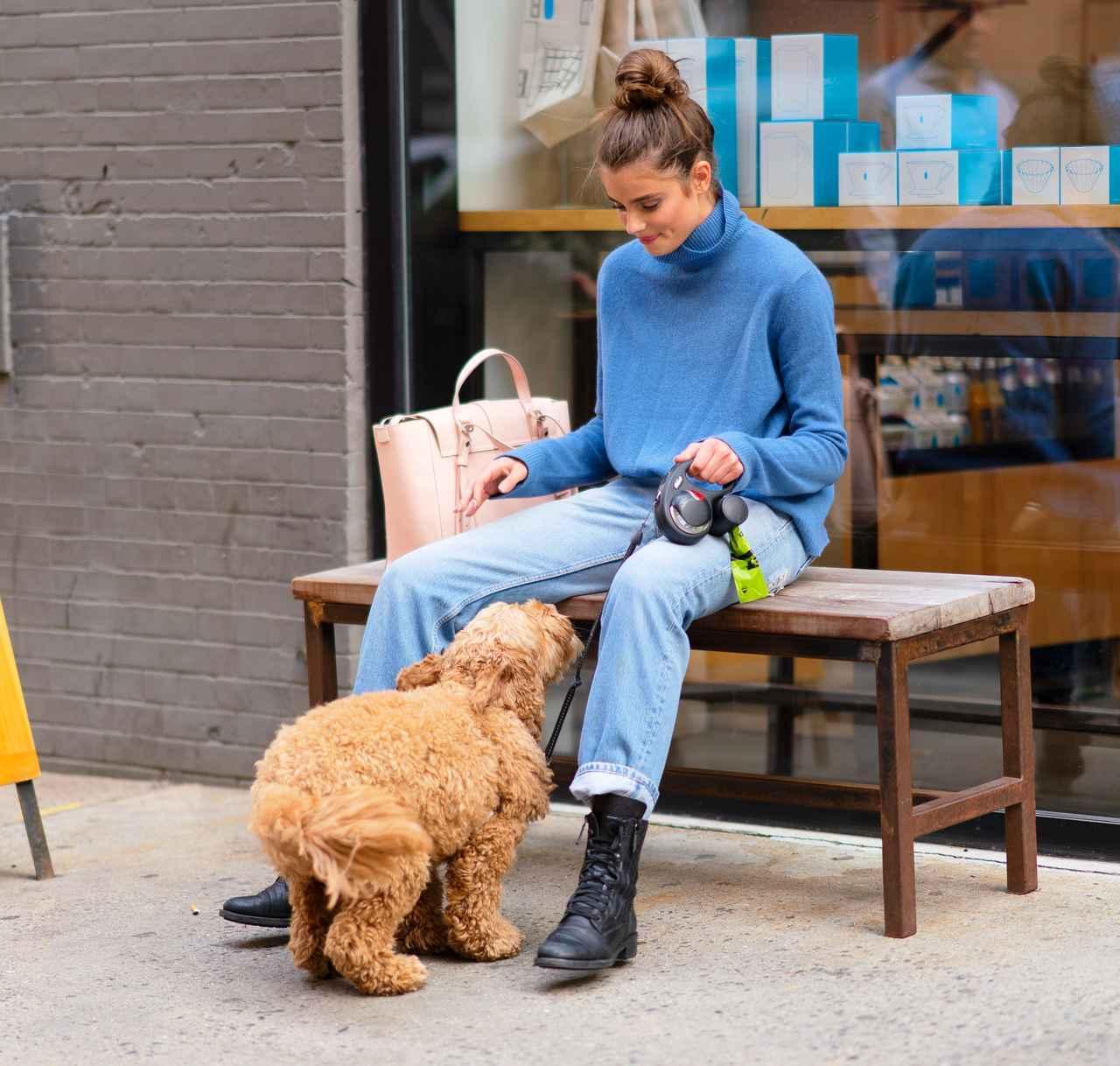 画像5: 溺愛する愛犬とブルーボトルコーヒーへ